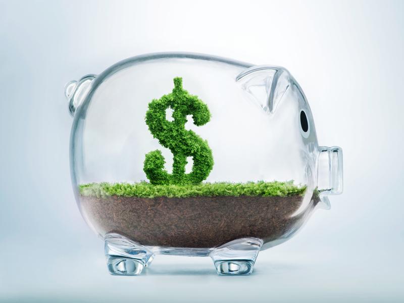Tirelire en verre à l'intérieur de laquelle pousse un signe de dollar végétal.