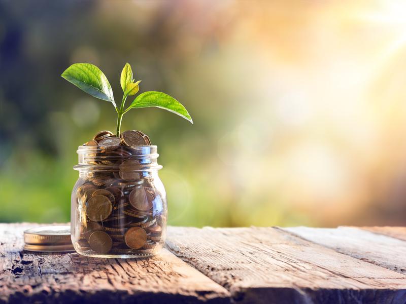 Un pot masson rempli de pièces de monnaie. Dans ces pièces est plantée une petite plante.