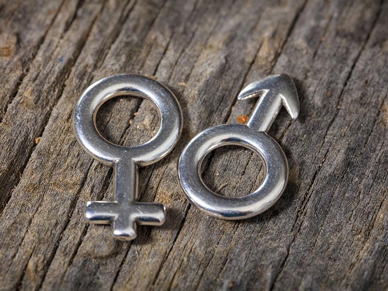 Gamètes féminin et masculin