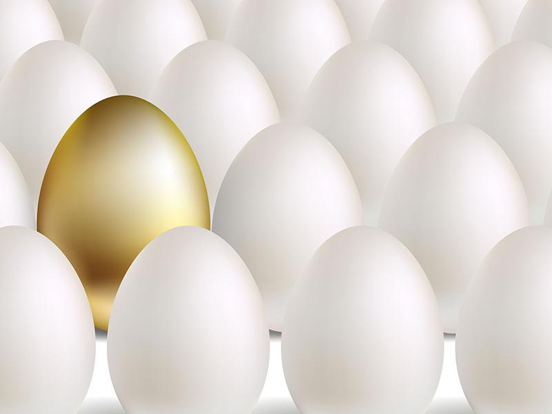 Oeuf en or parmi des oeufs blancs.