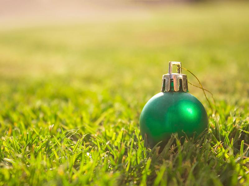 Boule de Noël verte dans le gazon.