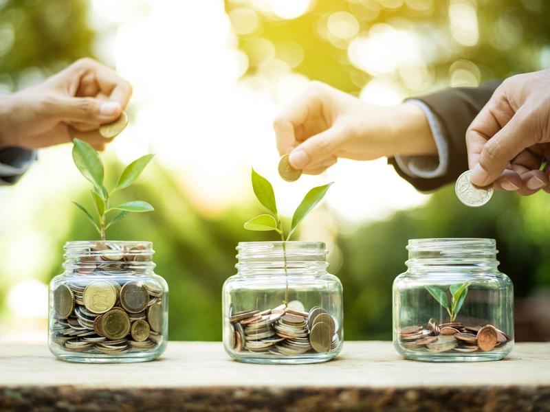 Plusieurs mains d'hommes d'affaires mettent de la monnaie dans des pots d'où poussent des plantes.
